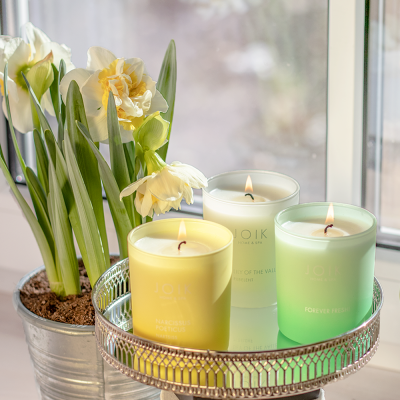 Spring candle news: Narcissus Poeticus